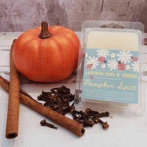 Pumpkin Spice Bundle